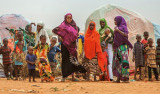 Reducing the risks of food crises